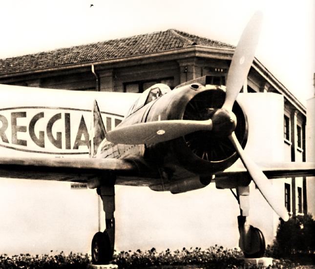 Reggiane_F3-vi