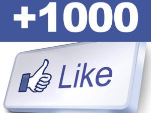 1000Like Reggiane